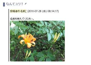 2_7.jpg